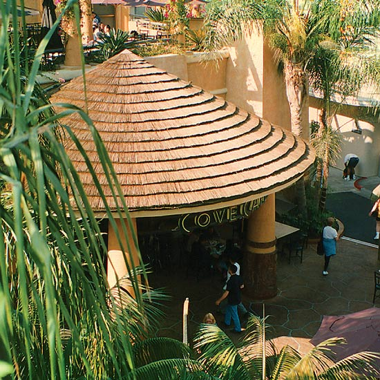 Cone Shaped Reed Thatch Bar Roof