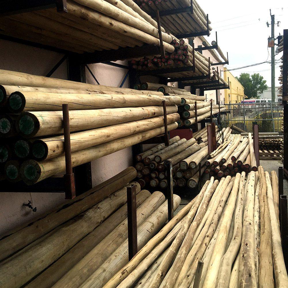 Pile of Eucalyptus Timber Poles