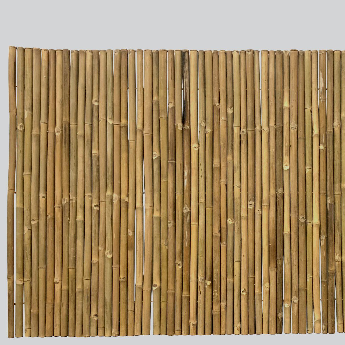 Natural Bamboo Screen